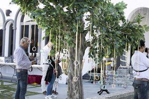 tree Haldi indian wedding Dubai palm jumeirah